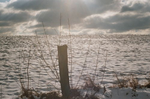 Winter-1-500